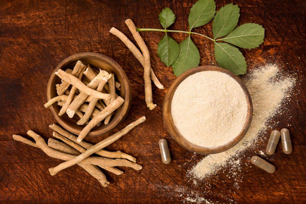 Conheça os benefícios da erva ashwagandha para o bem estar e a vitalidade -  Blog Ageless - UOL