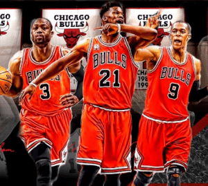 bulls13