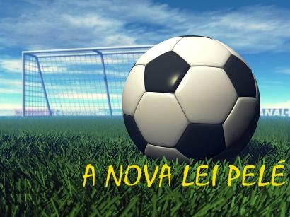 copia_de_lei_pelE