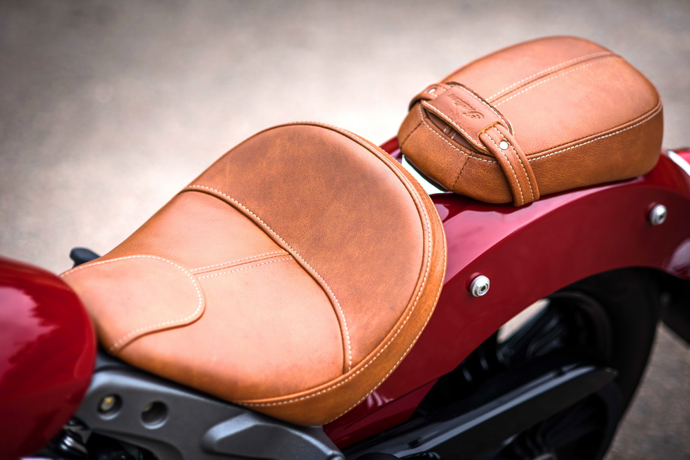 Indian Scout (6)