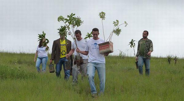 À frente do grupo, o secretário Arthur Abreu carrega as mudas para o plantio. Foto: divulgação