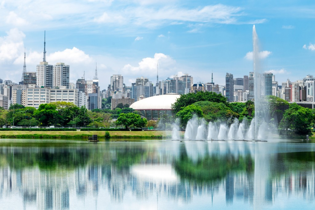 Sao Paulo city from Ibirapuera Park, Brazil