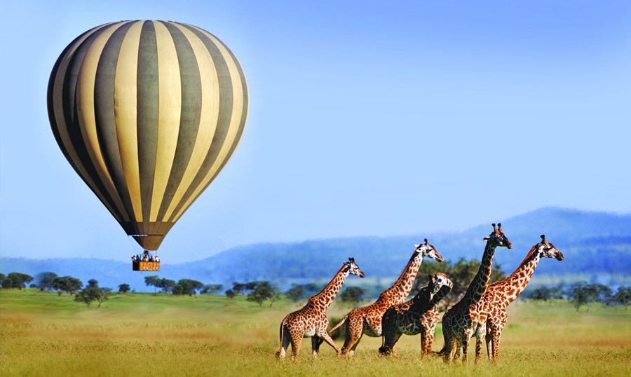 Serengeti - Tanzânia