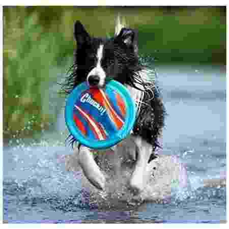 Disco Frisbee Lite - Divulgação - Divulgação