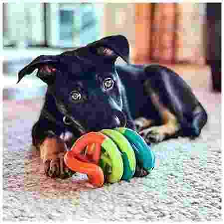 Brinquedo Espiral - Divulgação - Divulgação