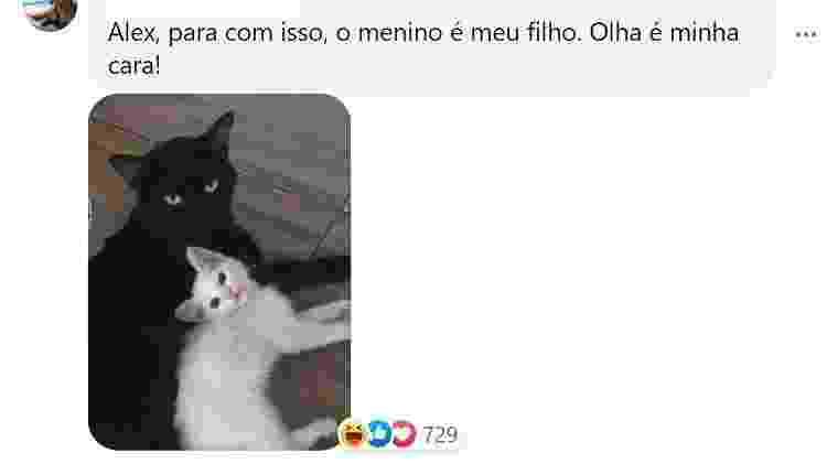 Comentário na postagem do gato Salem - Reprodução/Facebook - Reprodução/Facebook