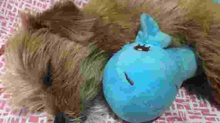 Cachorro dorme abraçado com ursinho de pelúcia - Reprodução/Facebook - Reprodução/Facebook