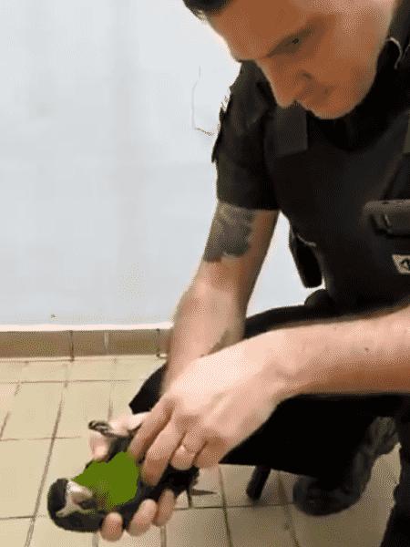 O segurança Everton aplica massagem cardíaca em papagaio na estação Oratório do metrô de São Paulo - Reprodução/Twitter