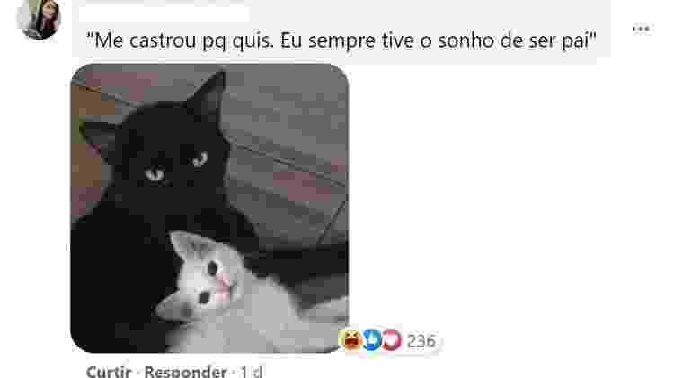 Comentários post Salem - Reprodução/Facebook - Reprodução/Facebook