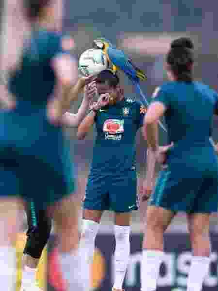 Arara Pelé pousa na jogadora Bruna Benites em treino da seleção - Reprodução/Instagram