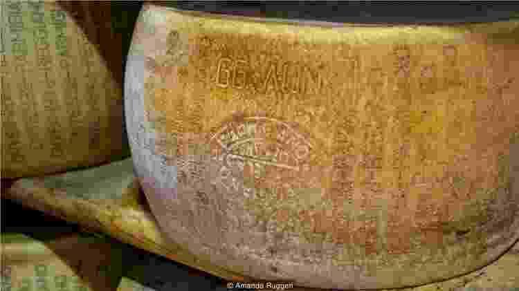 O queijo é feito usando apenas três ingredientes: leite, sal e renina - Amanda Ruggeri - Amanda Ruggeri