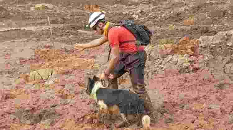 Desde o dia do rompimento da barragem de rejeitos, os cães farejadores já encontraram mais de 20 mortos - DIVULGAÇÃO/CBMG - DIVULGAÇÃO/CBMG