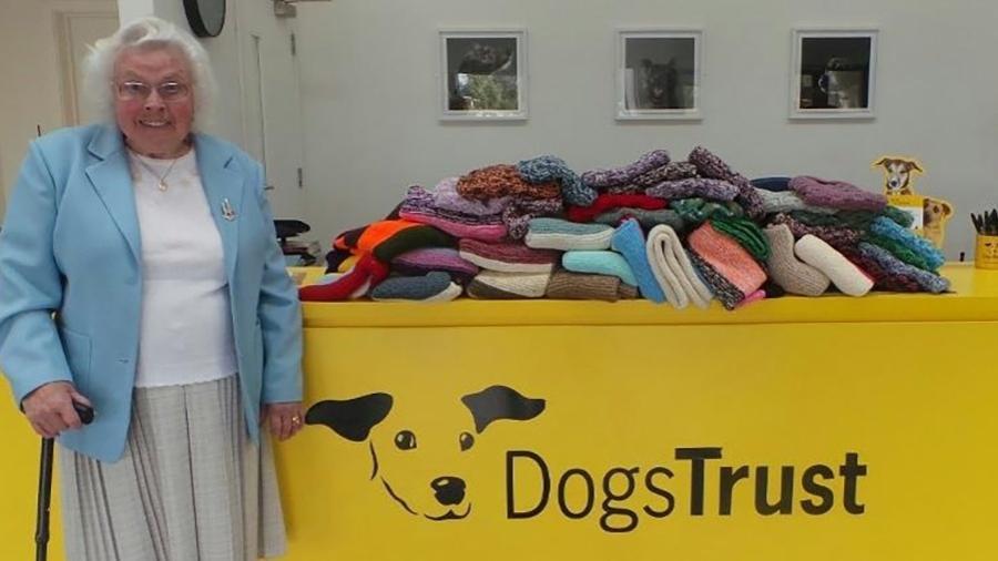 """Divulgação/Dog""""s Trust"""