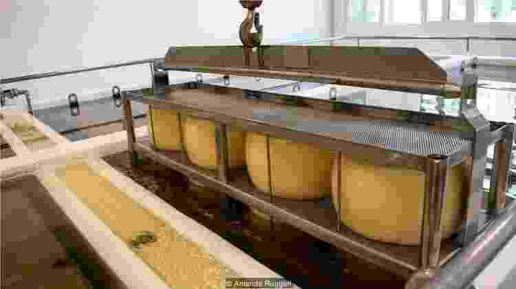 Embora seja um produto lácteo, o Parmigiano Reggiano pode ser ingerido por quem sofre de intolerância à lactose - Amanda Ruggeri - Amanda Ruggeri