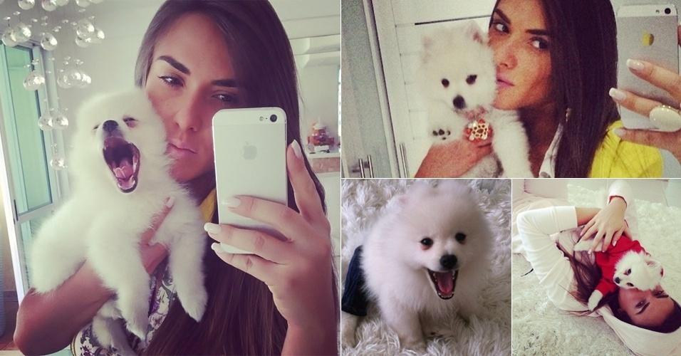 11.jul2013 - Nicole Bahls dividiu um momento triste com os fãs na web na noite desta quinta-feira; o cãozinho da beldade, apelidado de Bruninho, não resistiu a uma forte gripe e morreu após ser internado em uma clínica veterinária, na Barra da Tijuca, no Rio de Janeiro.