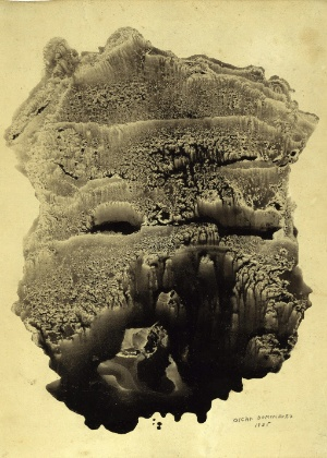 """Obra """"Décalcomanie"""" faz parte da mostra """"La cime du rêve"""" - EFE"""