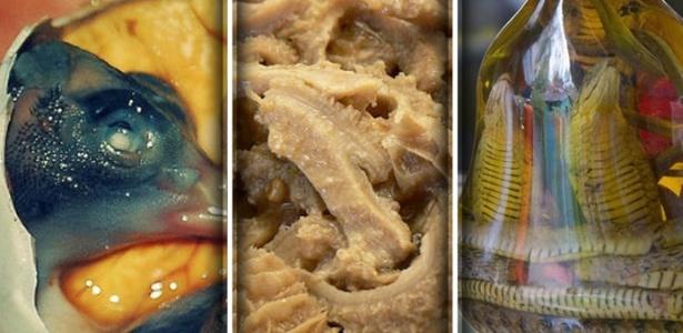 Balut, estômago e vinho de cobra são algumas das comidas estranhas da lista - Reprodução/Hostel World/Telegraph/Montagem BOL