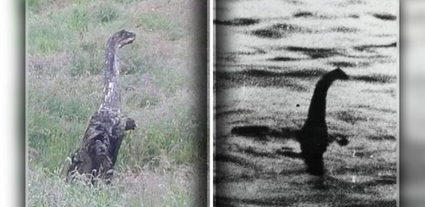 Criatura parecida com um 'dinossauro' foi registrada na Escócia