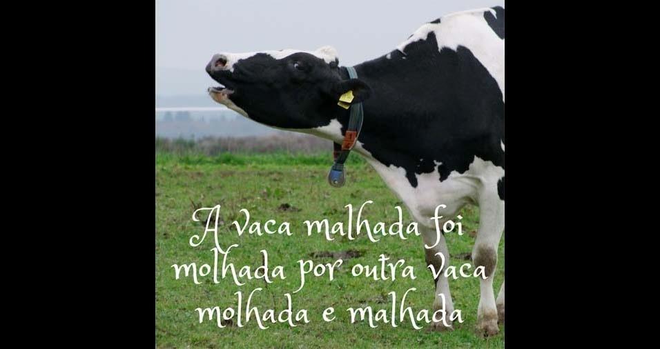 21. A vaca malhada foi molhada por outra vaca molhada e malhada