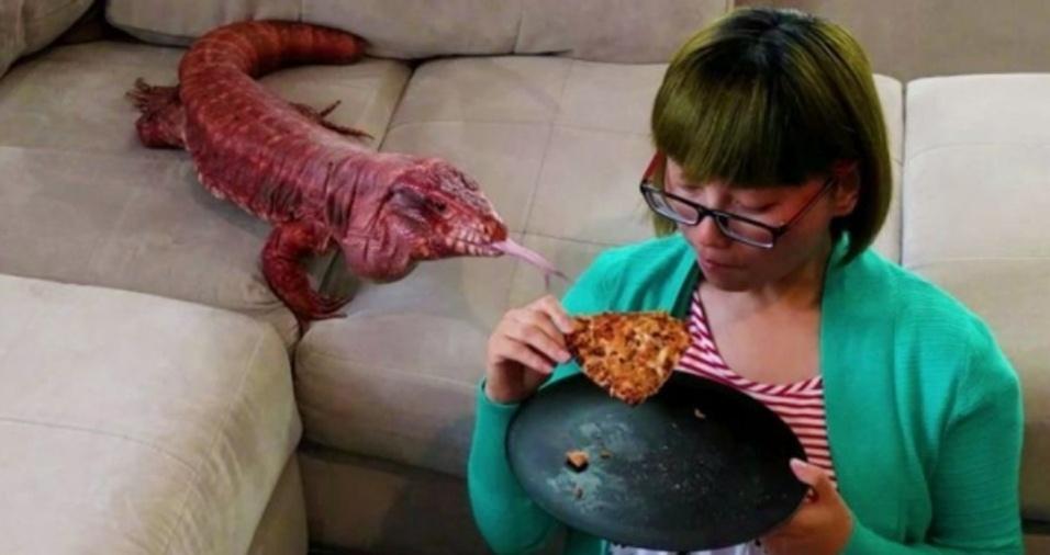 3. Assim como o seu cachorro que logo aparece quando você está prestes a devorar algo, MacGyver não se deixa enganar e fica coladinho na dona quando ela vai comer, especialmente se o prato for pizza!