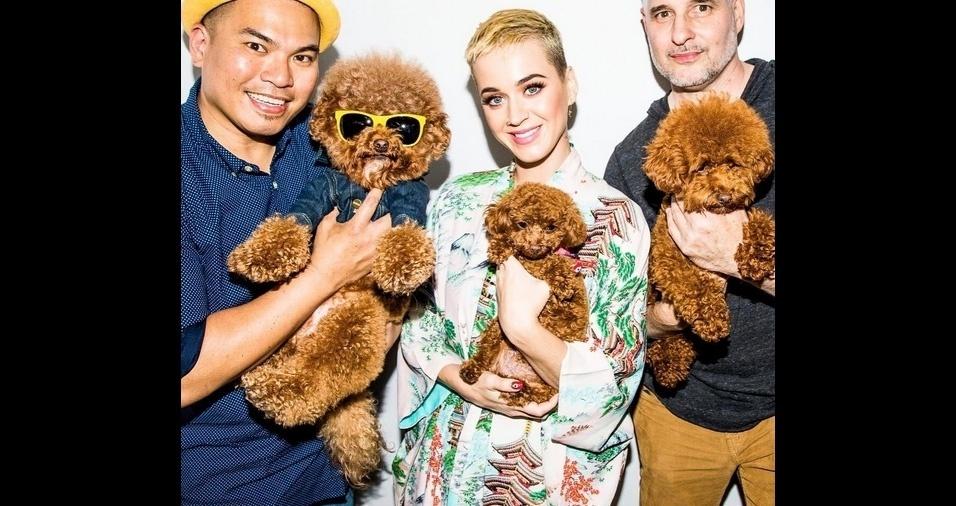 8. A cantora Katy Perry sempre foi louca por gatinhos, mas está completamente apaixonada por sua nova cachorrinha Nugget
