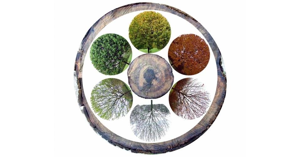 2. O calendário hindu tem seis estações: privamera, verão, monções, outono, inverno e prevernal, ou pré-primavera