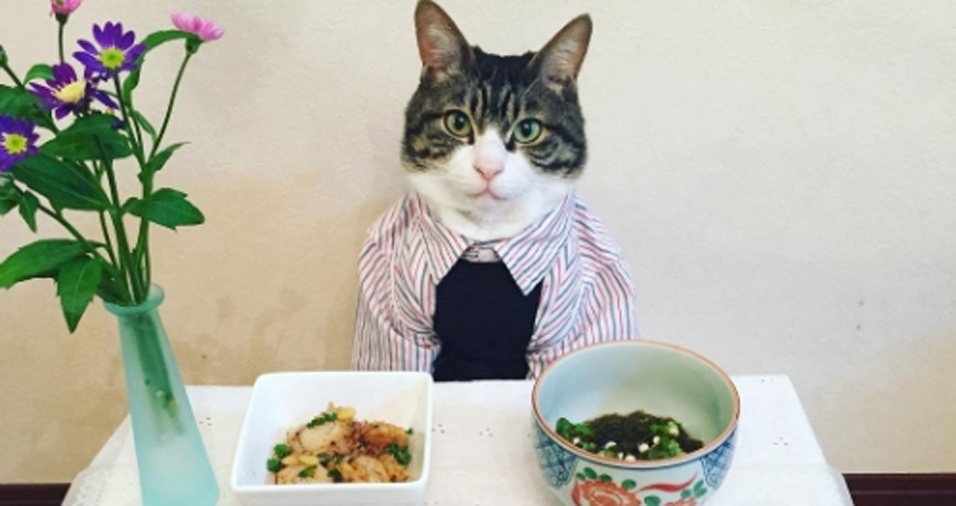 2. Vai jantar com a gatinha e não sabe o que vestir? Uma camisa listrada pode dar um charme a mais