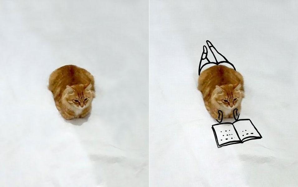 """7.dez.2015 - A imagem de um gatinho sentado """"como gente"""" (esq.) virou meme na web após internautas, sobretudo dos Estados Unidos, começarem a fazer desenhos usando a imagem do pobre felino. Nas ilustrações hilárias, o gatinho aparece lendo, trabalhando, ou simplesmente curtindo altas aventuras"""