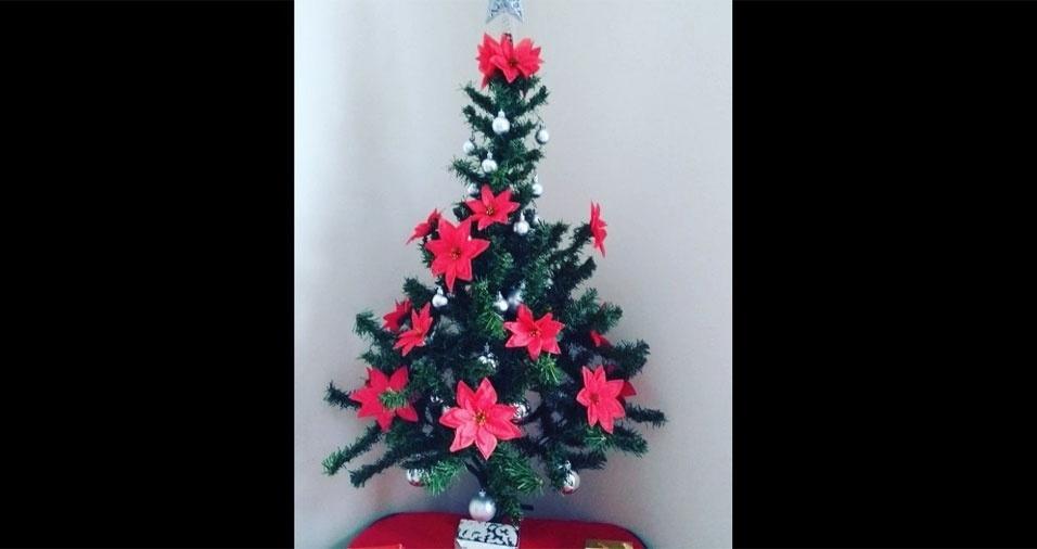 Cleide Helena compartilhou sua decoração de Natal com o BOL