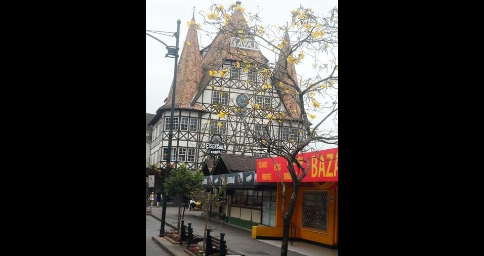 Vilson, de Blumenau (SC), mostra o ipê amarelo de sua cidade