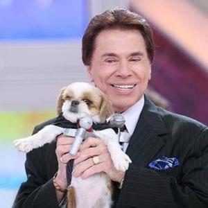 """Em 2012, o apresentador recebeu a visita de um """"sósia canino"""", arrancado risos da plateia do """"Programa Silvio Santos"""""""