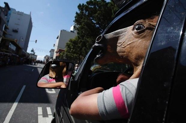 27.dez.2013 - Um homem entrou no clima de uma tradicional parada de cavalos em San José, na Costa Rica, e surpreendeu os participantes do evento ao dirigir usando uma máscara de cabeça de cavalo. A mobilização, que faz parte das festividades locais de fim de ano, reuniu dezenas de pessoas montadas nos animais