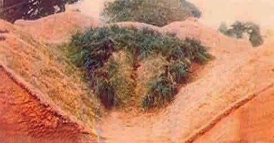 15.fev.2014 - Quem vai discordar que a natureza pode compor cenários muitos singulares como este aí em cima? O que para uns é apenas uma composição de terra e vegetação, para outros pode parecer outra coisa...