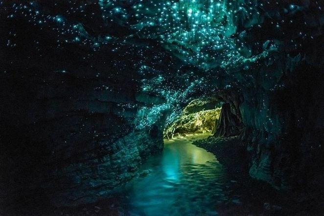 Conhecida como Glowworm Caves, esta caverna localizada na Nova Zelândia, na cidade de Waitomo, possui milhares de pequenas moscas com bioluminescência, o que produz uma luz esverdeada. Quando se aglomeram, os pontos de luz dão a impressão que o teto da caverna parece um céu estrelado