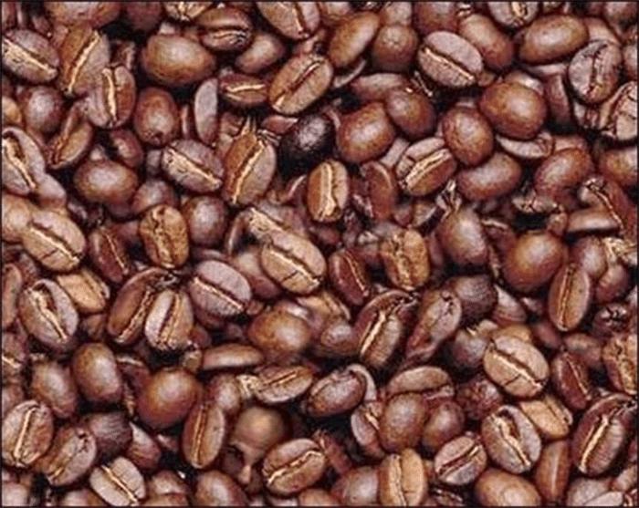 No meio das sementes de café há o rosto de uma pessoa. Você consegue encontrar? Olhe bem! Ali, embaixo, bem no meio da imagem; viu?