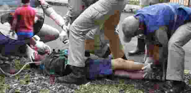 Menino atacado por tigre em zoológico teve o braço amputado na altura do ombro - Reprodução/CGN