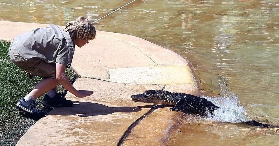 26.set.2014 - Em outro momento, Robert Irwin persuadiu um filhote de crocodilo a abandonar a água para alimentá-lo.