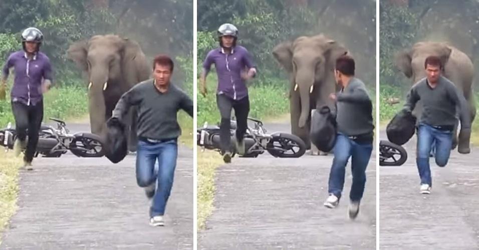 12.nov.2014 - Na Índia, dois homens foram surpreendidos por um elefante furioso e tiveram que fugir deixando a moto em que estavam para trás. A aventura foi filmada por um indiano chamado Jasoprakas Debdas. O vídeo foi postado no YouTube e teve mais de 380 mil visualizações.
