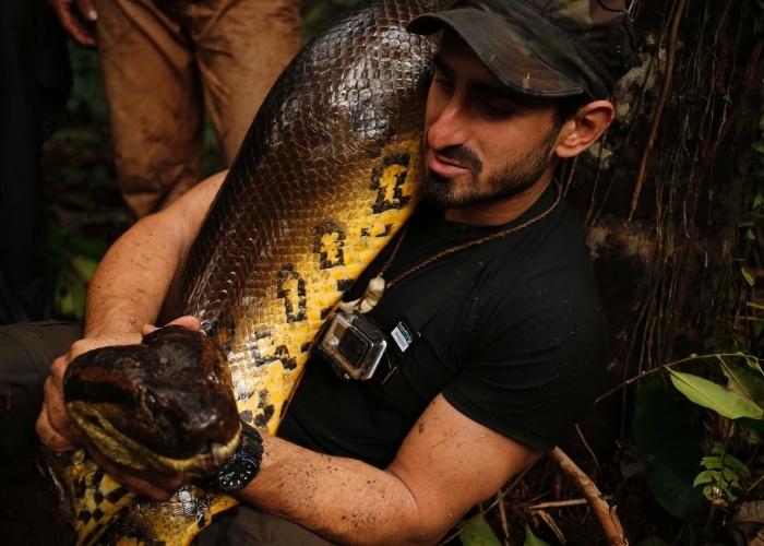 2.dez.2014 - O réptil gigante é conhecido por crescer até 30 metros de comprimento e por atacar sua presa usando seus dentes e mandíbulas poderosas antes de esmagá-la com o seu corpo maciço.