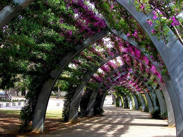 2.fev.2015 - Entre as mais belas ruas do mundo está uma charmosa viela de Brisbane, na Austrália