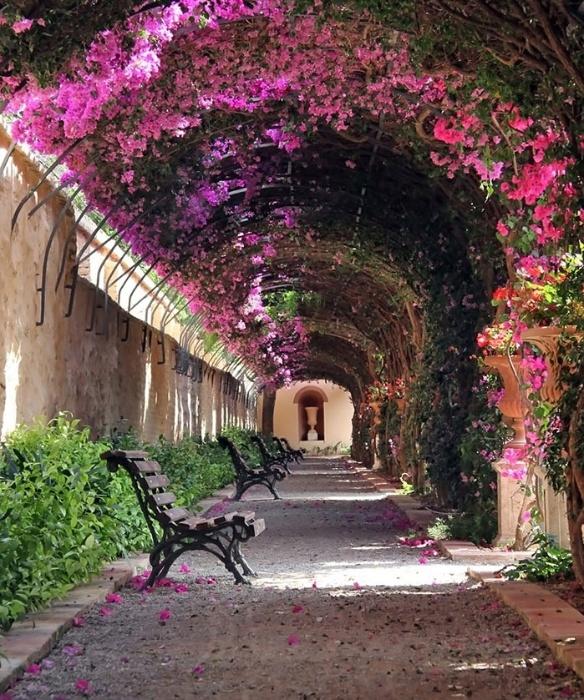 2.fev.2015 - Esta arborizada rua em Valencia, na Espanha, integra o time das mais belas do mundo, segundo lista do site gringo Bored Panda