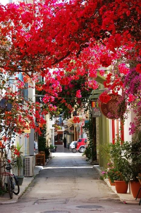 2.fev.2015 - Esta rua da região de Peloponeso, na Grécia, foi considerada uma das mais bonitas do mundo