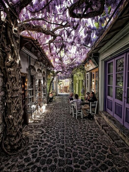 2.fev.2015 - O site gringo Bored Panda fez uma lista reunindo as ruas mais bonitas do mundo. Arborizadas e com paisagens de tirar o fôlego, as imagens mostram ruas onde qualquer pessoa gostaria de morar. Na imagem, uma rua de Molyvos, na ilha de Lesbos, na Grécia