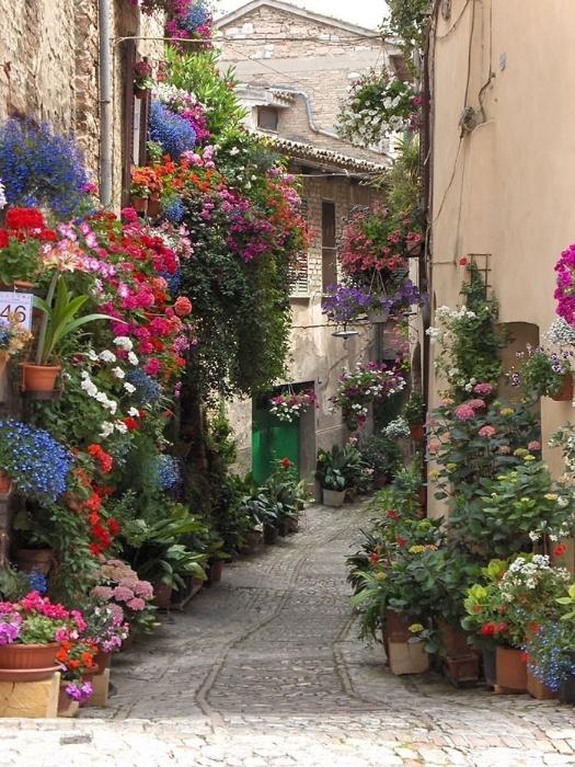 2.fev.2015 - O site gringo Bored Panda fez uma lista reunindo as ruas mais bonitas do mundo. Arborizadas e com paisagens de tirar o fôlego, as imagens mostram ruas onde qualquer pessoa gostaria de morar. Na imagem, uma rua de Spello, na Itália
