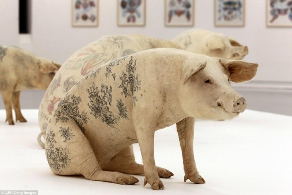 20.mar.2015 - Alguns dos porcos tatuados foram peças de uma exposição -