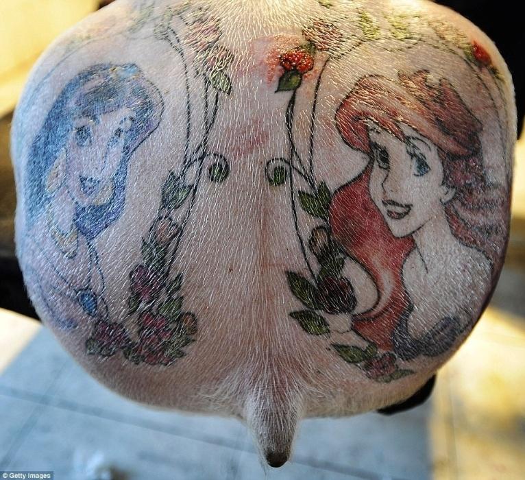 20.mar.2015 - Na imagem, um porco com uma tatuagem de Ariel (dir..), de