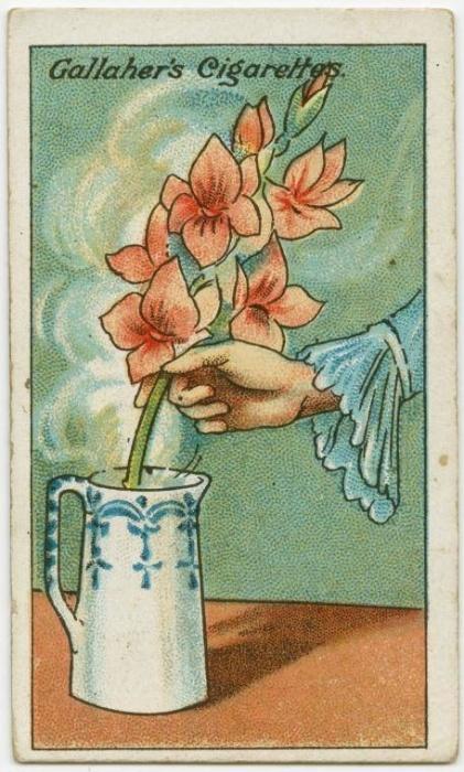 21. Como reavivar flores cortadas: para reavivar flores que tenham murchado no caminho desde a floricultura, mergulhe as hastes em água quente e deixe-as lá até a água esfriar. Depois, corte as extremidades das hastes e coloque as flores em água fria, como faria normalmente