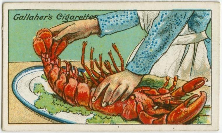 22. Como identificar se uma lagosta está fresca: ao escolher uma lagosta cozida, levante a cauda e solte-a de uma vez. Se ela cair rapidamente, está fresca. Se descer lentamente, já foi cozida há alguns dias. Lagosta, pra mim, é igual caviar. Nunca comi, só ouvi falar