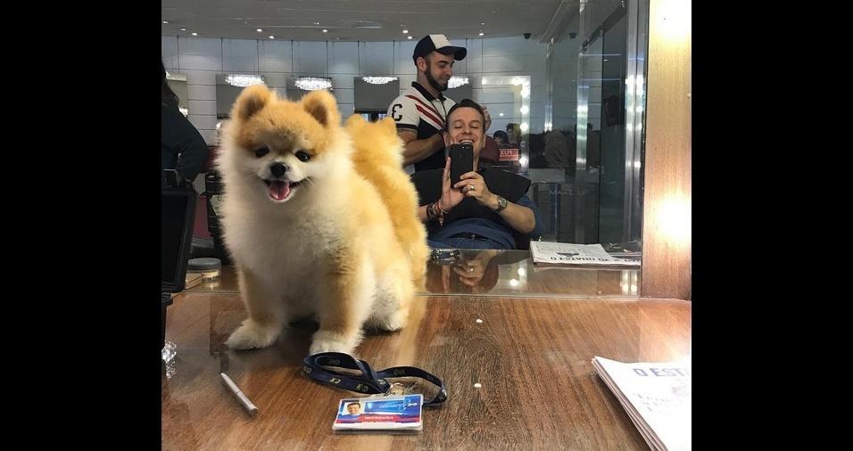 13. O apresentador de TV e jornalista Celso Zucatelli vive ao lado do Paçoca, seu lindo cachorrinho