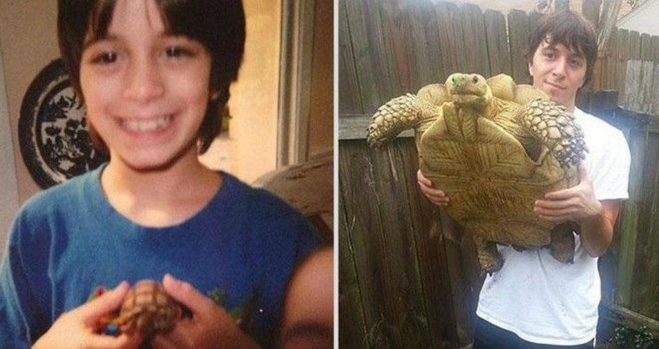 9. A tartaruga ficou gigante!